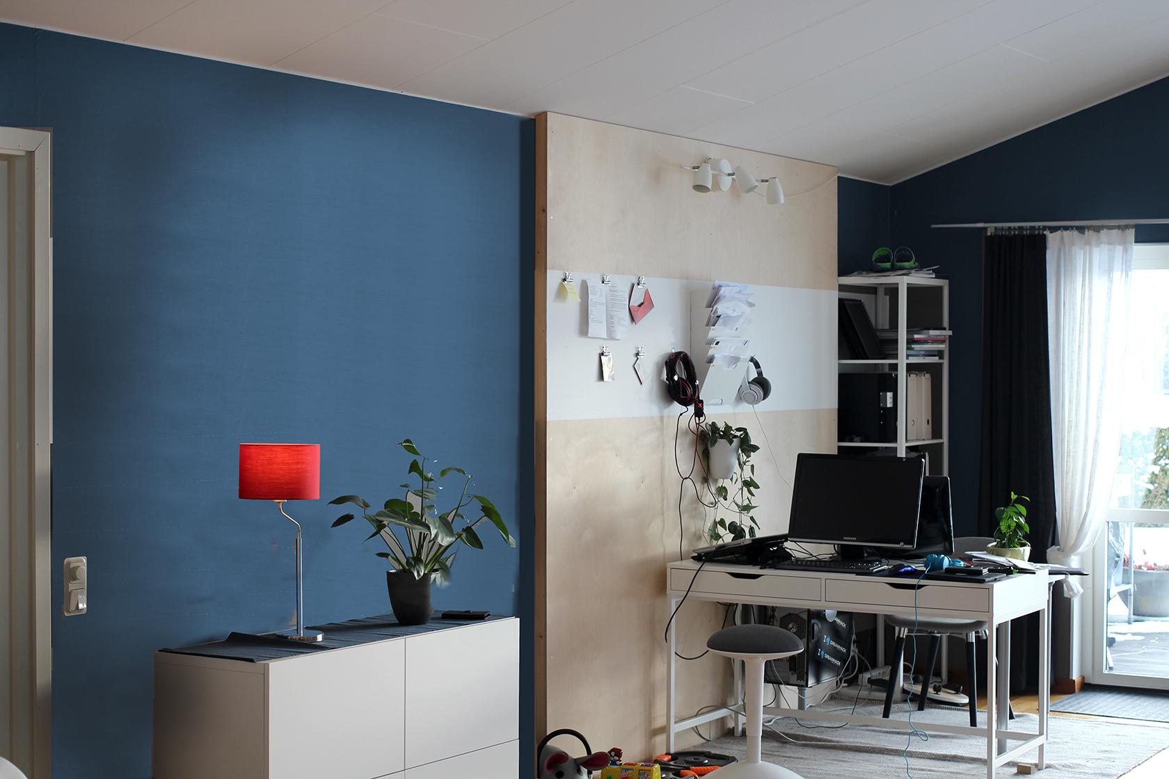 IMG_6540 blå